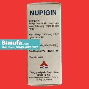 Nupigin