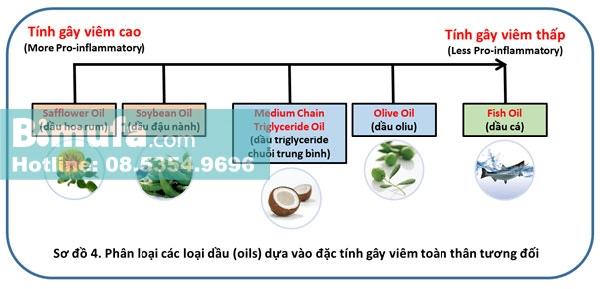 Phân loại các loại dầu (oils) dựa vào đặc tính gây viêm toàn thân tương đối