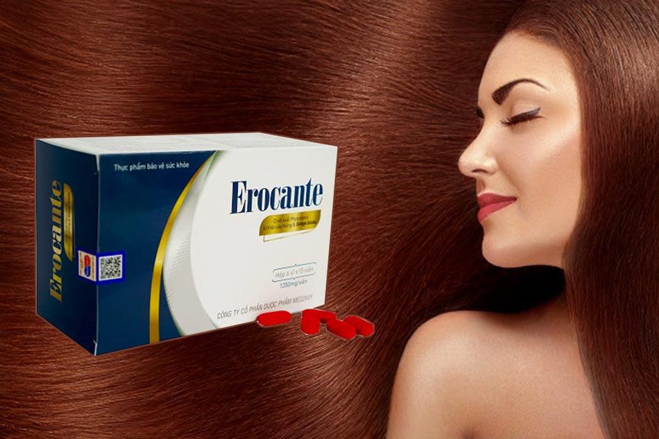 Erocante sản phẩm phục hồi nuôi dưỡng tóc hư tổn
