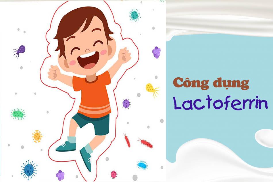 Công dụng của Lactoferrin
