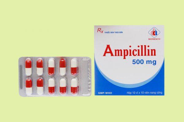 Kháng sinh Ampicillin