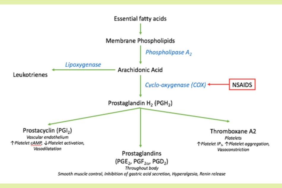 Cơ chế tác dụng của NSAIDs