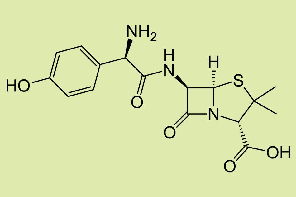 Cấu trúc hóa học của Amoxicillin