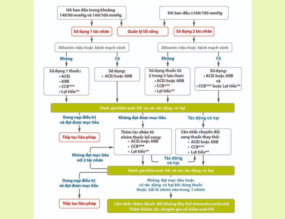 Các khuyến cáo trong điều trị tăng huyết áp ở bệnh nhân đái tháo đường