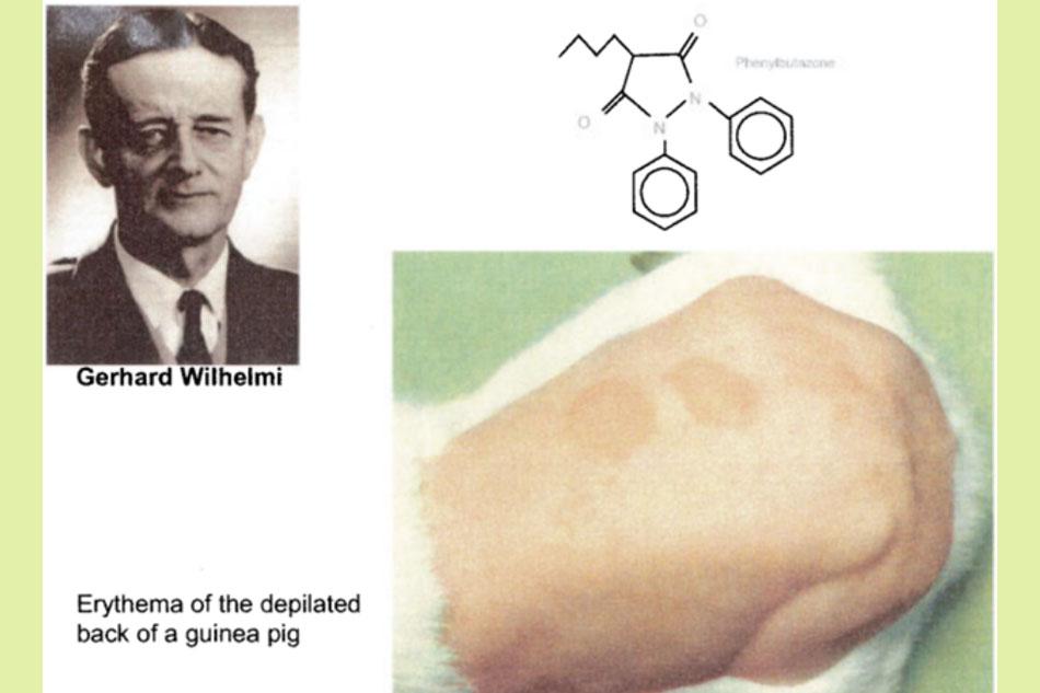 Khám phá ra tác dụng chống viêm của Phenylbutazone